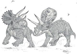 Triceratops versus Torosauro Torosaurus