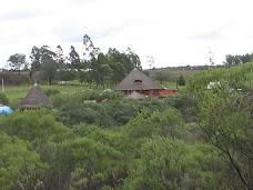 Instituto de Permacultura e Ecovilas da Pampa