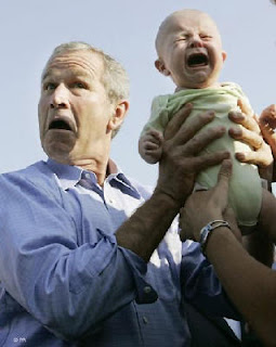 Bush with young'un