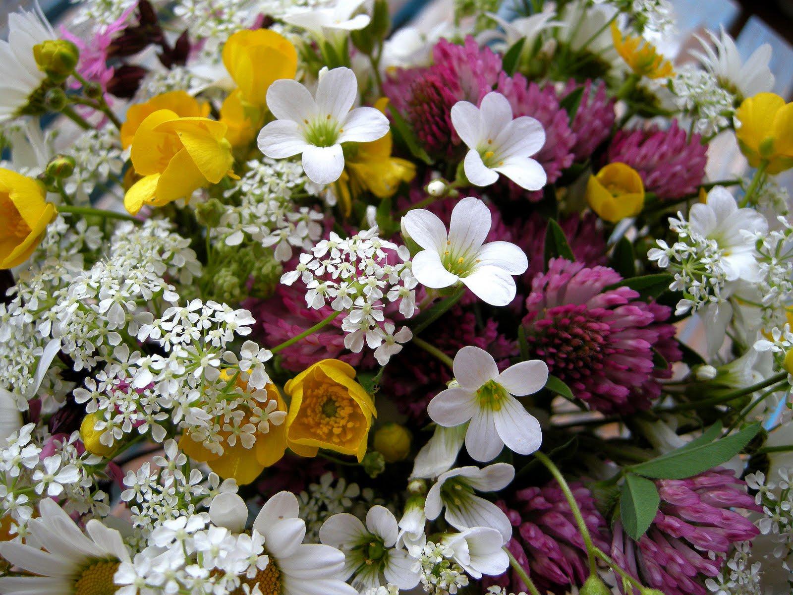 Un coeur qui bat bouquet de fleurs champ tre for Bouquet de fleurs raiponce