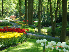Сад-парк Кёкенхов