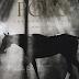 Veuve Clicquot Classic - Go Polo!
