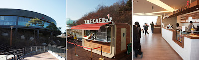 Restaurant and Cafe Dream Forest Seoul