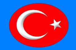 Türkeli bayrağı