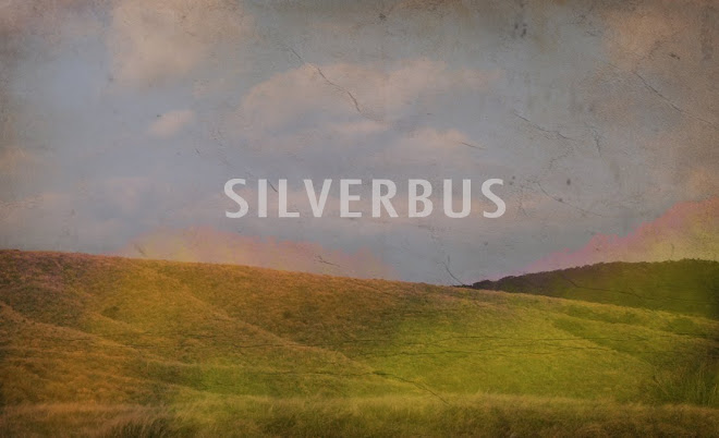 SILVERBUS