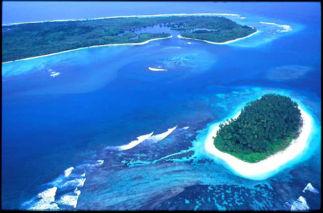 spot at sipora island