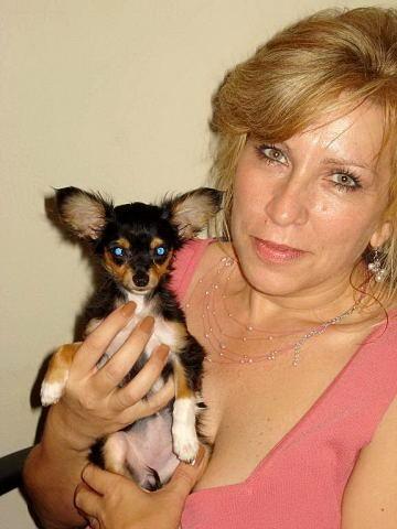 My lil dog