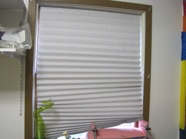 rita 39 s sew fun pleated paper window shades. Black Bedroom Furniture Sets. Home Design Ideas
