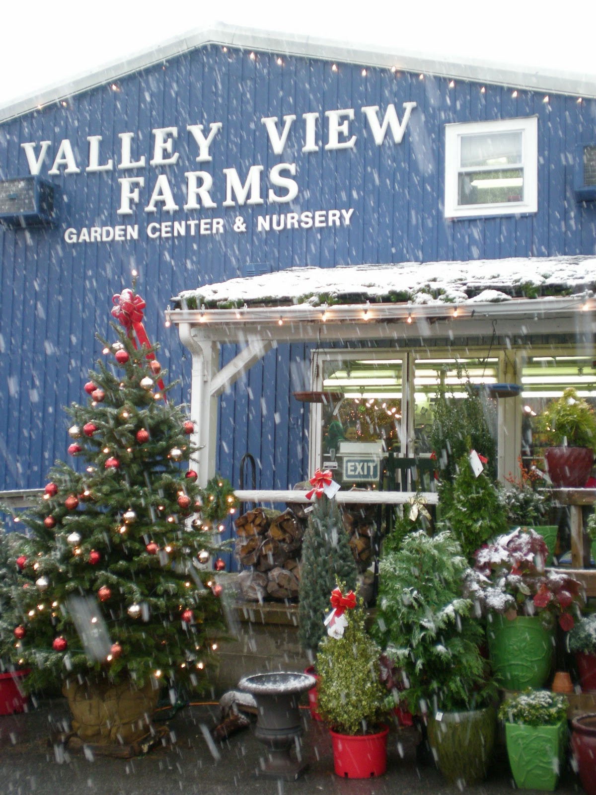 valley farms Our goal is to help the water well driller and pump installer finish the job profitably and on-time we are committed to stocking the largest inventory of water well supplies in michigan and northern indiana/ohio.