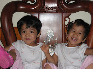 This is our family's journey to adopt 3 year old twin girls from Vietnam.
