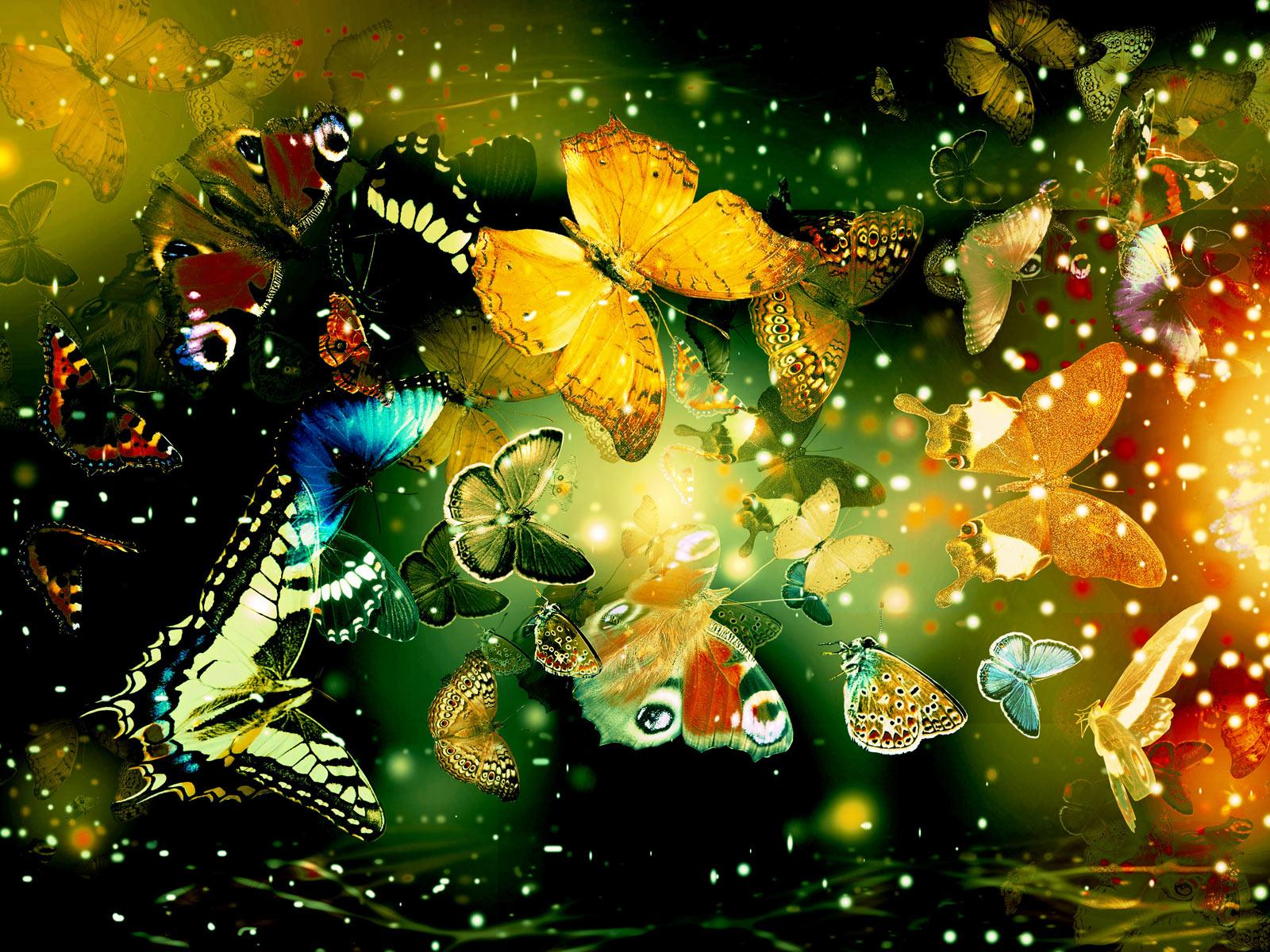 http://2.bp.blogspot.com/_QX-IXJNA8os/S_Omzp1GodI/AAAAAAAAEJQ/lzvLV0iQb0o/s1600/Butterflies_+%2819%29.jpg