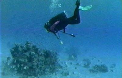 Mar Rojo investigación