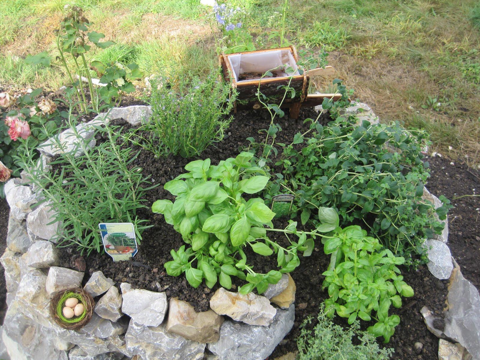 Bepflanzungsplan Für Eine Kräuterschnecke