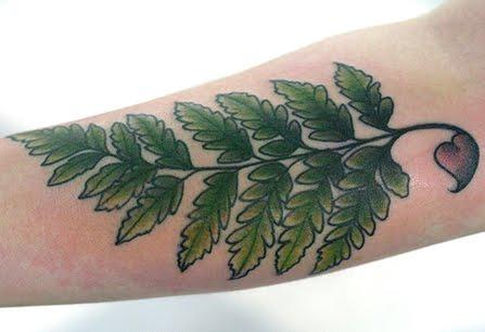 fern tattoo design