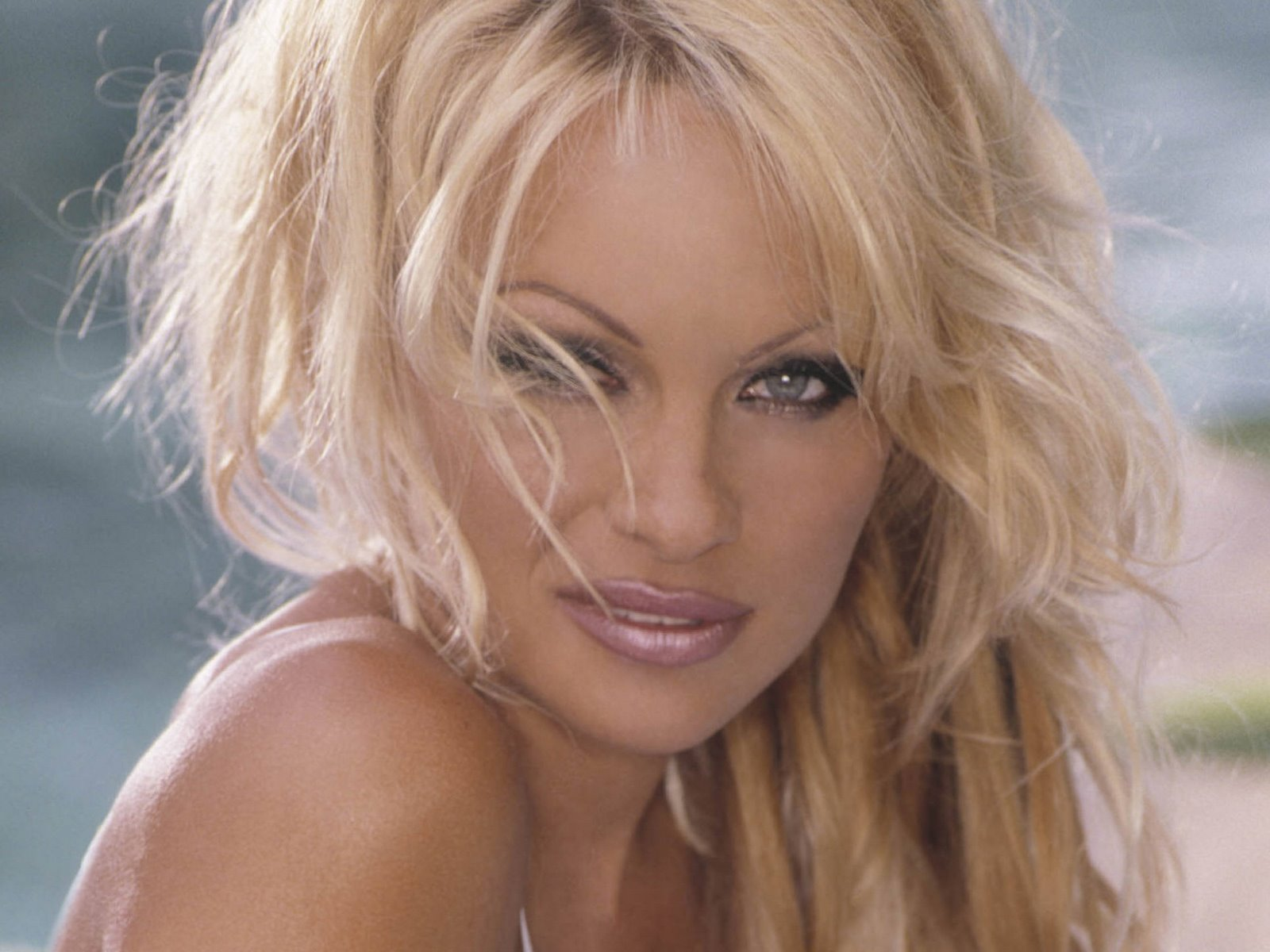 Pamela Anderson Hot Wallpapers Free Download