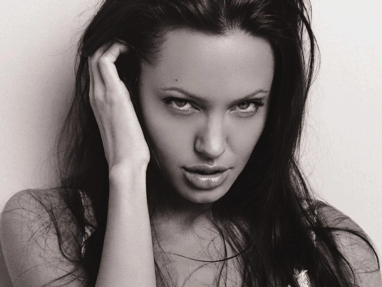 angelina jolie pics   movie gallery sexy actress gallery unseen celebs