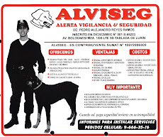 ALVISEG SEGURIDAD PRIVADA