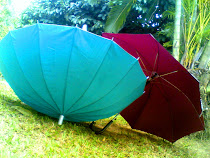 red and blue umbrella