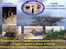 Blog of Russian Hunting Adventures