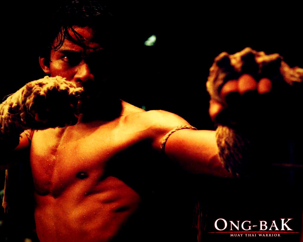 http://2.bp.blogspot.com/_QahWUGV6wMI/TTfWcDaFOLI/AAAAAAAAAP8/1FYSAKsnmoY/s1600/2.jpg