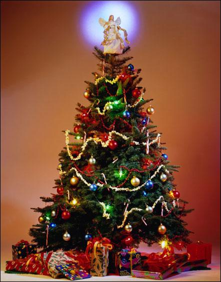 Navidad diferentes dise os de arbol de navidad - Disenos de arboles de navidad ...