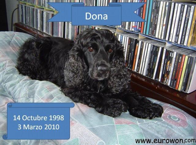 Foto de homenaje a la cocker Dona