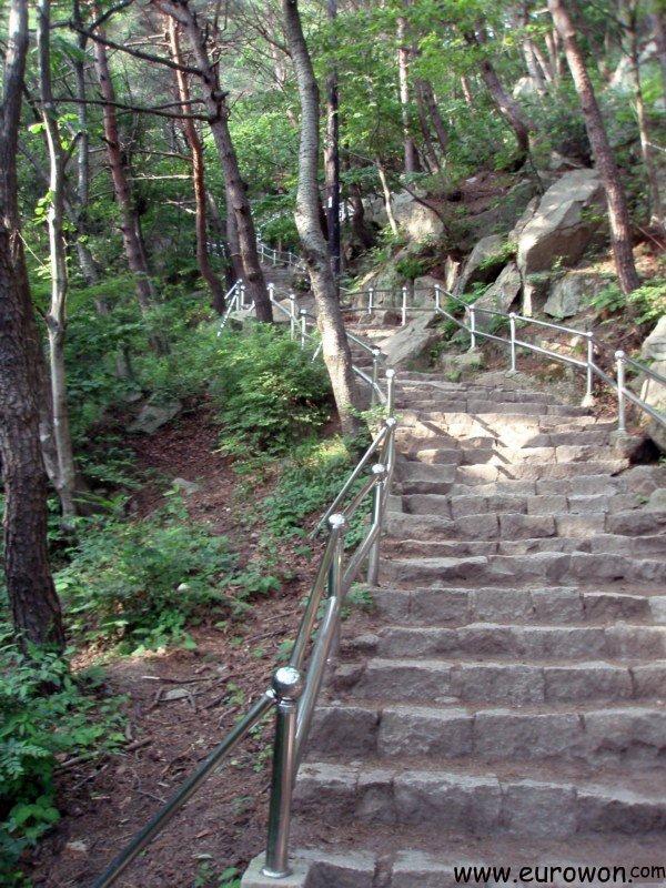 Escaleras de subida al Gatbawi del monte Palgongsan de Daegu