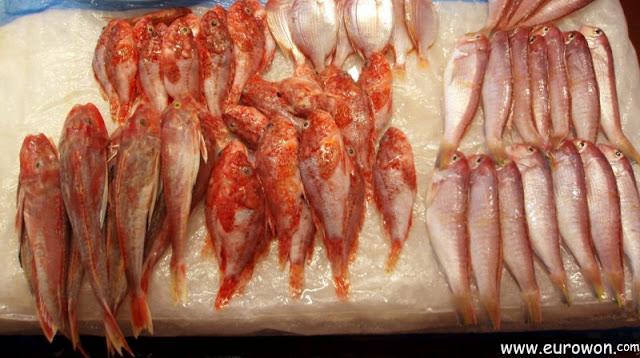 Peces rojos okdom típicos de la isla Jejudo