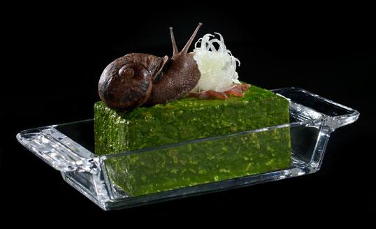 http://2.bp.blogspot.com/_QbkPPMYPEqY/TOWdheIpJ_I/AAAAAAAAAJA/3HfuOJDsrzM/s1600/snail+porridge.jpg