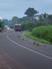Togo Flares