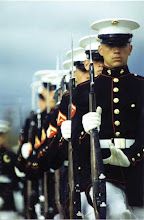 i fell in love with a marine