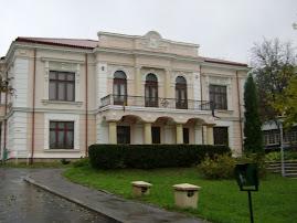 Muzeul literaturii romane-Casa Pogor