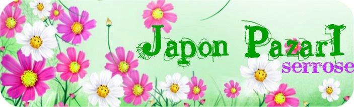 Japon Pazari
