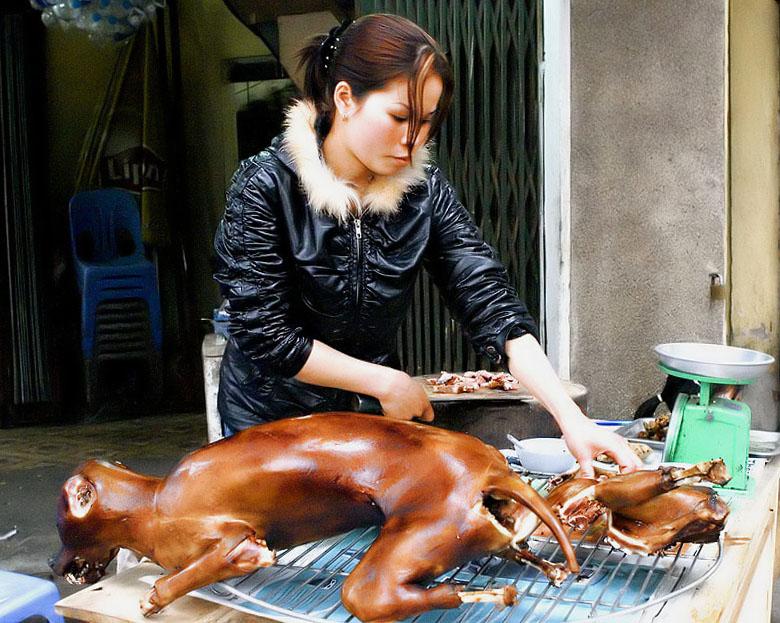 Koreans Eat Dog Korean Eat Dogs