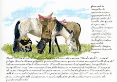 I miei cavalieri in Mongolia