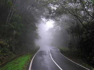 Kinabalu Park Sabah Malaysia Morning Mist