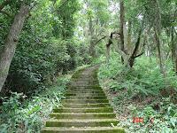 水泥石階步道