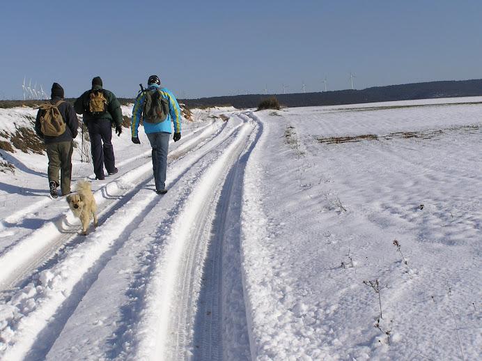 Al Tejar nevado