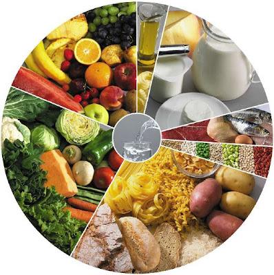 Nova Roda dos Alimentos