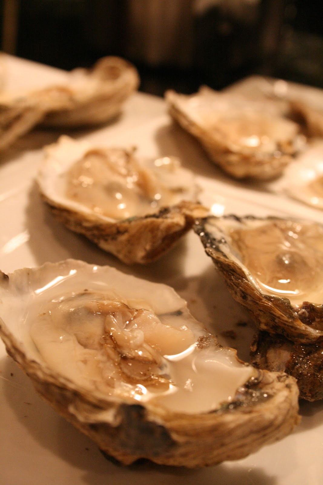 Howchow oysters at frank 39 s seafood in jessup for Jessup fish market