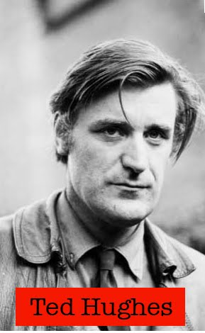 ted hughes wind Wuthering heights is the title of both ted hughes' and sylvia plath's  hughes  personifies the wind when it ' came with empty eyes to look.