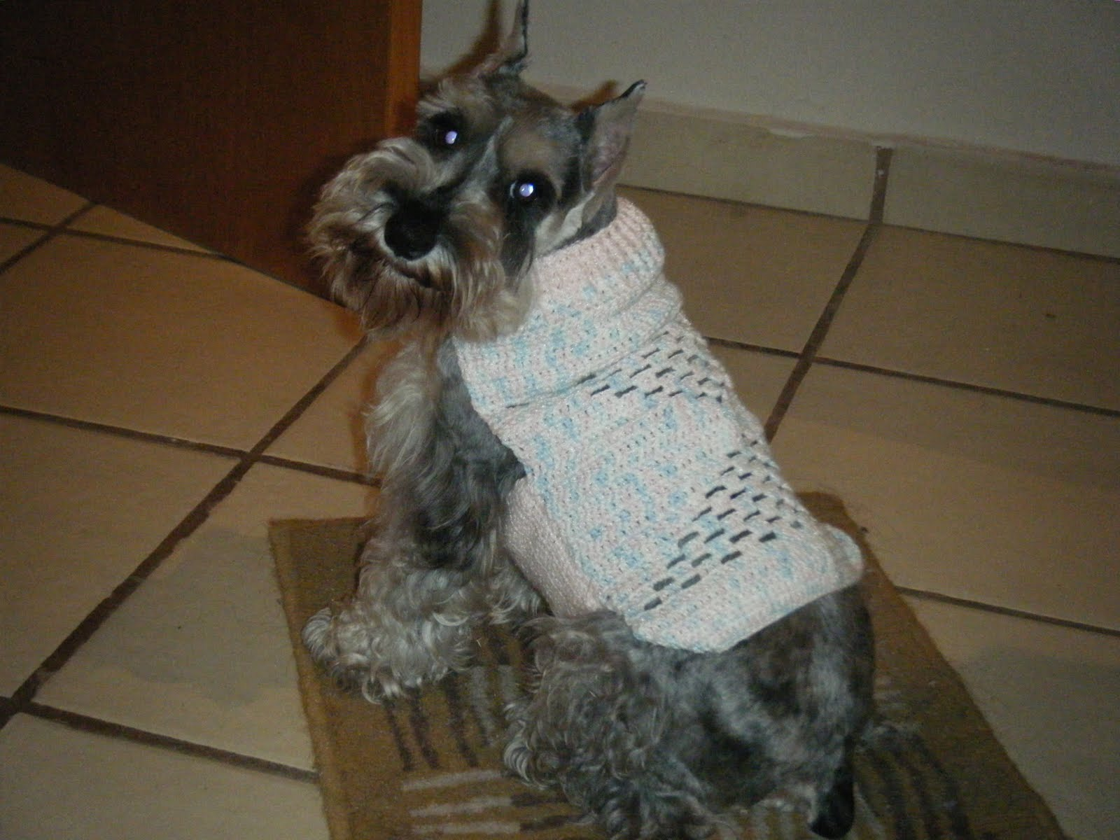Increíble Patrón De Ganchillo Suéter Perro Grande Adicional Cresta ...