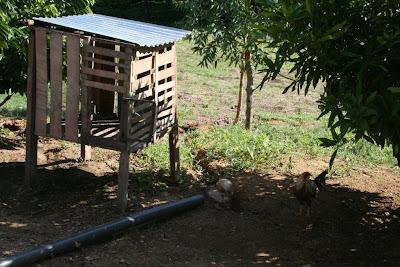013 - October/November in Popoyo Nicaragua