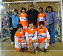 Provincial 2009