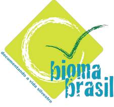 O Brasil que o brasileiro não conhece