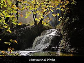 Monasterio de Piedra II Concurso de Fotografía -Relax-