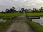 Jalan Ke Kg Gua Sukat