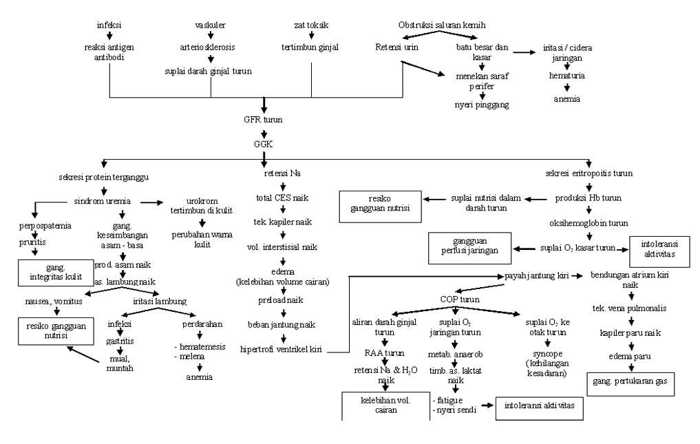 acute lung oedema adalah pdf