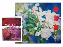 Master Disaster: book & DVD [North Light 2007]