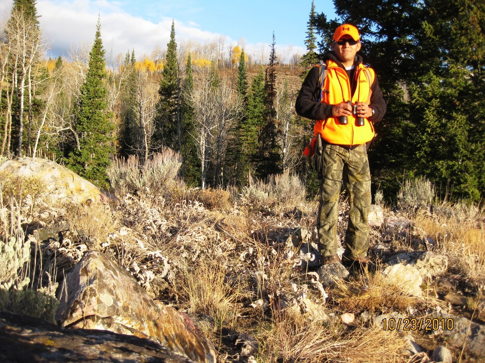 the hunting trip A fully guided ontario bear hunting trip in northwest ontario, canada our bear hunting guides are professional and have great success over the years we've been in business.